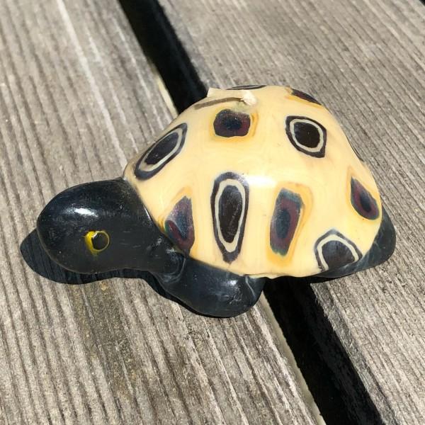 Turtle Lee