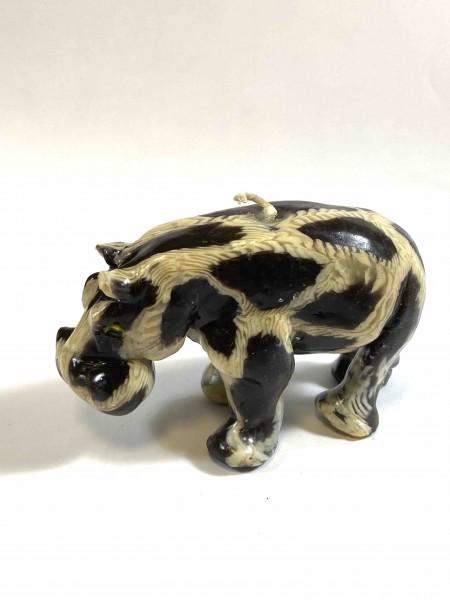 Hippo Ben