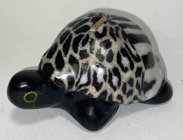 Turtle Three