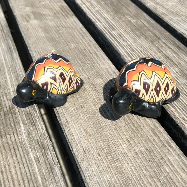 Turtle Marla