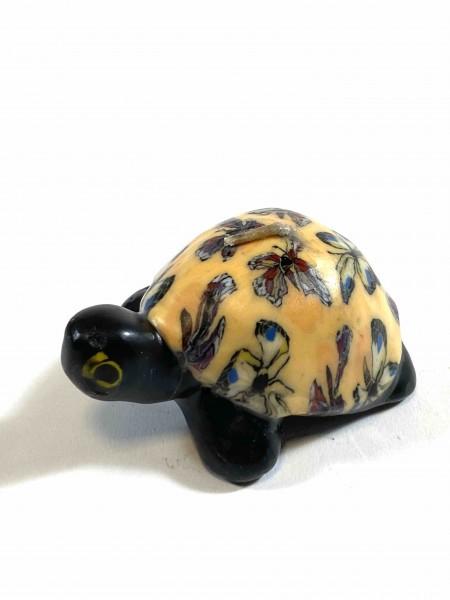 Turtle Butterfly